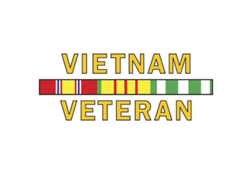 VIETNAM VETERAN SERVICE RIBBONS DECAL